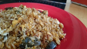 TM_fried rice