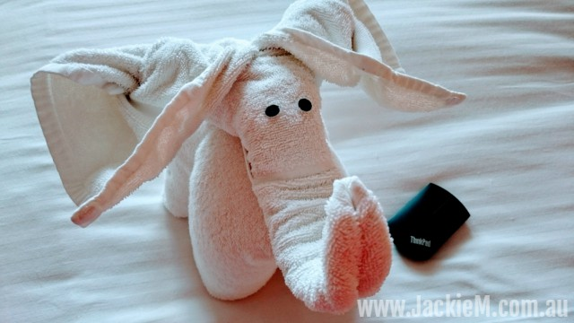 We got different towel animals in our cabin daily